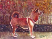 Jean-Marie Poisson - Sheebah Dog