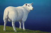 Mammals Paintings - Sheep at the edge by James W Johnson