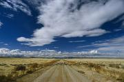 Dirt Roads Photos - Sheep Crossing A Dirt Road In Western by Phil Schermeister
