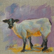 Shorn Sheep Framed Prints - Sheep Faced Framed Print by Donna Shortt