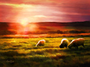 Pasture Digital Art Posters - Sheep In Sunset Poster by Suni Roveto