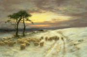 Sunset Light Posters - Sheep in the Snow Poster by Joseph Farquharson