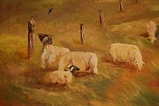 Old Barns Paintings - Sheep by Jane  Harris
