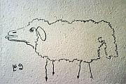 Coal Drawings Prints - Sheep Print by Lyudmila Arangelova