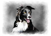 Sheep Dog Posters - Sheepdog Portrait Poster by Michael Greenaway