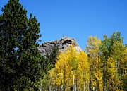 Colorado Mountain Prints Posters - Sheeps Head Mountain In the Autumn Poster by Donna Parlow