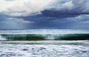 Charmian Vistaunet Posters - Sheer Wave Poster by Charmian Vistaunet