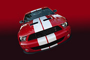 Photomanipulation Photo Prints - Shelby attitude Print by Bill Dutting
