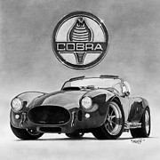 Graphite Drawing Art - Shelby Cobra by Tim Dangaran