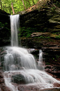 Reynolds Prints - Sheldon Reynolds Falls Print by Derek  Burke