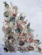 Caribbean Sea Mixed Media - Shell Bouquet  No  3 by Karin Best