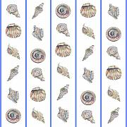 Shells Mixed Media - Shell Pattern by John Keaton