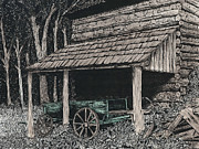 Country And Western Drawings - Shelter by Mike OBrien