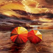 Umbrella Digital Art - Shelter by Photodream Art