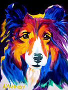 Rainbow Canvas Framed Prints - Sheltie - Missy Framed Print by Alicia VanNoy Call