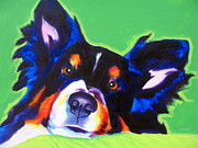 Dog Art Paintings - Sheltie - Socks by Alicia VanNoy Call