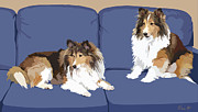 Dogs Digital Art Metal Prints - Sheltie Chic Metal Print by Kris Hackleman