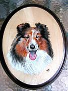 Pet Portraits Pyrography - Shelty by John Tatham