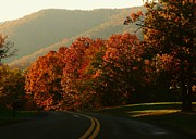 Northern Virginia Photos - Shenandoah Autumn by Joyce  Kimble Smith