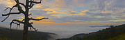 Appalachia Photos - Shenandoah Sunrise - 4342 by Chuck Smith