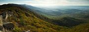 Shenandoah Valley Posters - Shenandoah Valley from Marys Rock Poster by Dustin K Ryan