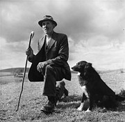 Only Mid Adult Men Posters - Shepherd Poster by Bert Hardy