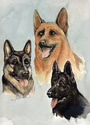 Police Paintings - Shepherds  by Nancy Patterson