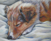 Sable Sheltie Posters - Shetland sheepdog sleeping puppy Poster by Lee Ann Shepard