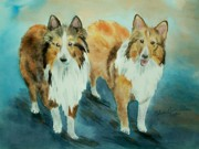 Portaits Prints - Shetland Sheepdogs My Beautiful Shelties Print by Melanie Palmer