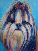 Shihtzu Prints - Shih Tzu Print by Jack No War