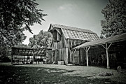 Arkansas Framed Prints - Shiloh barn Framed Print by Toni Hopper