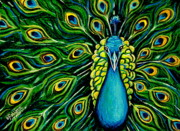 Good Luck Pastels Posters - Shimmering Feathers of a Peacock Poster by Elizabeth Robinette Tyndall