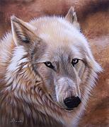 Wolf Portrait Paintings - Shine by Sandi Baker
