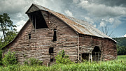 Tin Roof Prints - Shingle Barn 3 Print by Douglas Barnett