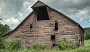 Tin Roof Prints - Shingle Barn 5 Print by Douglas Barnett