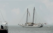 Windjammer Photos Prints - Ship 23 Print by Joyce StJames
