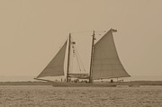Windjammer Photos Prints - Ship 31 Print by Joyce StJames