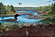 Raccoon Painting Posters - Ship Harbor Mudflat in Acadia National Park Poster by Logan Parsons