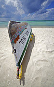 Aruba Prints - Ship of the Caribbean  Print by David Letts