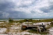 Beach Scenes Photo Originals - Ship wrecked and buried by Barbara Bowen