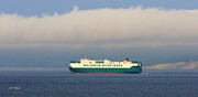 Wallenius Wilhelmsen Prints - Shipping Cargo Print by Tap On Photo