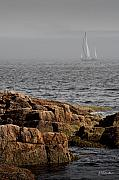 Sailboat Ocean Photos - Ships Harbor in Maine by James Dricker