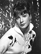 Maclaine Posters - Shirley Maclaine Around 1960 Poster by Everett