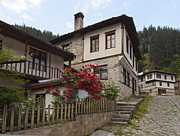 Bulgaria Metal Prints - Shiroka Laka village Metal Print by Evgeni Dinev