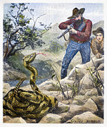 Bandolier Framed Prints - Shooting A Rattlesnake Framed Print by Granger