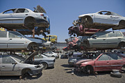 Dismantled Prints - Shot of Junkyard Cars Print by Noam Armonn