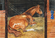 Show Horse Paintings - Show Day Nap by Kristine Plum