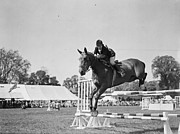 One Mature Man Only Posters - Show Jumping Poster by J A Hampton