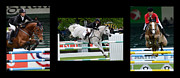 Show Jumping Prints - Show Jumping No Caption Print by Bob Christopher