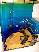 Shower Ceramics - Shower Jacuzzi Reef 2 by Thomas Deir